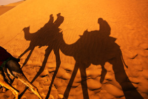 Camel ride on the Thar desert in India
